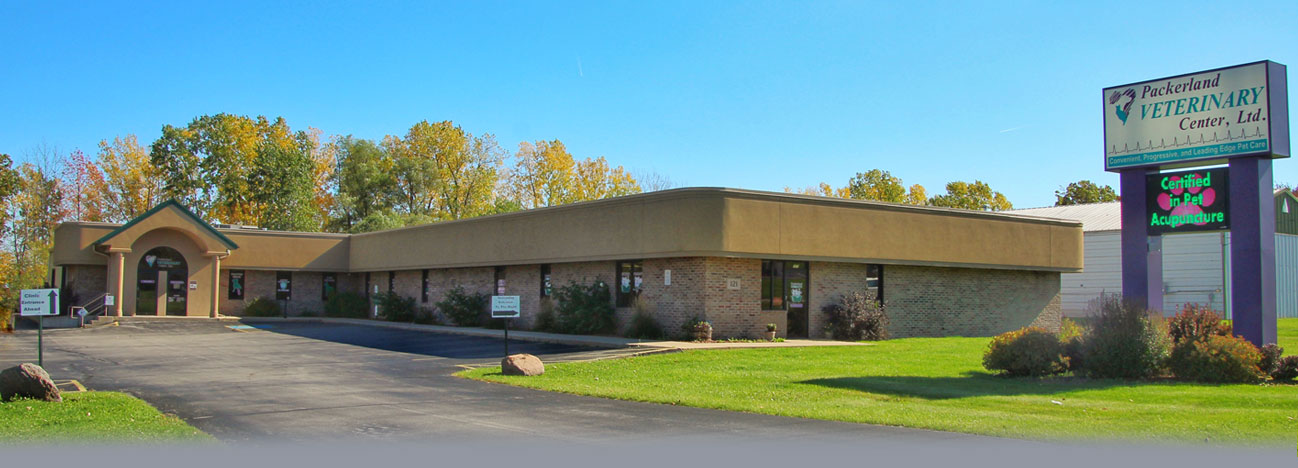 New Packerland Veterinary Center Clients
